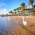 Enestående oplevelser på rejser til Hurghada